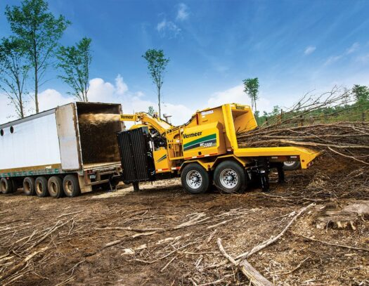 Land Clearing-Lantana Tree Trimming and Tree Removal Services-We Offer Tree Trimming Services, Tree Removal, Tree Pruning, Tree Cutting, Residential and Commercial Tree Trimming Services, Storm Damage, Emergency Tree Removal, Land Clearing, Tree Companies, Tree Care Service, Stump Grinding, and we're the Best Tree Trimming Company Near You Guaranteed!