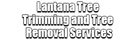 Lantana Tree Trimming and Tree Removal Services Logo-We Offer Tree Trimming Services, Tree Removal, Tree Pruning, Tree Cutting, Residential and Commercial Tree Trimming Services, Storm Damage, Emergency Tree Removal, Land Clearing, Tree Companies, Tree Care Service, Stump Grinding, and we're the Best Tree Trimming Company Near You Guaranteed!