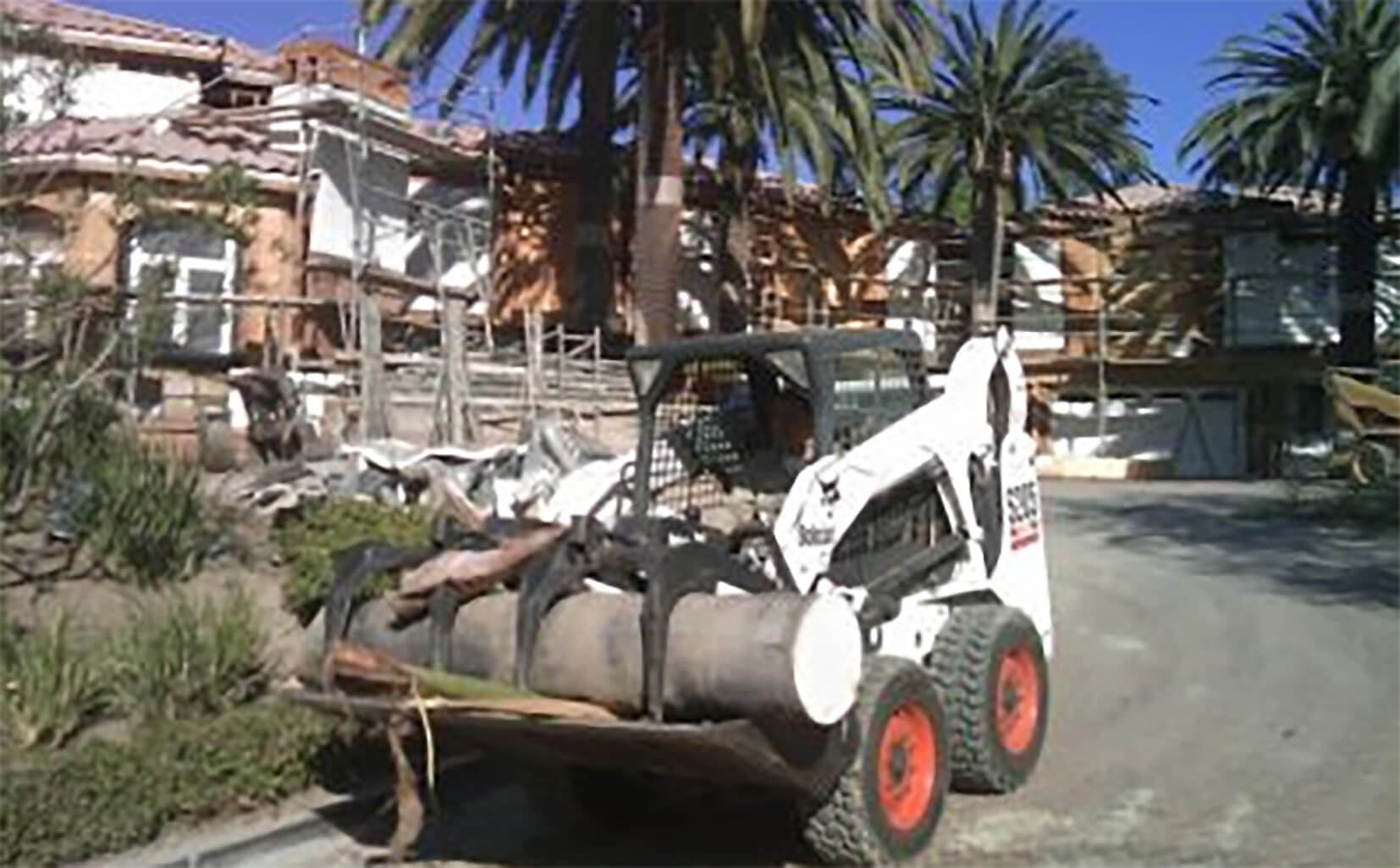 Palm Tree Removal-Lantana Tree Trimming and Tree Removal Services-We Offer Tree Trimming Services, Tree Removal, Tree Pruning, Tree Cutting, Residential and Commercial Tree Trimming Services, Storm Damage, Emergency Tree Removal, Land Clearing, Tree Companies, Tree Care Service, Stump Grinding, and we're the Best Tree Trimming Company Near You Guaranteed!