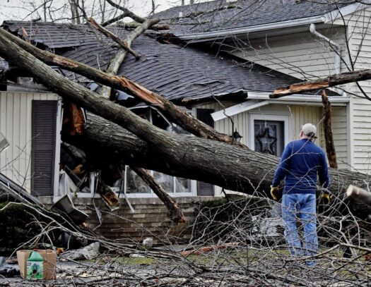 Storm Damage-Lantana Tree Trimming and Tree Removal Services-We Offer Tree Trimming Services, Tree Removal, Tree Pruning, Tree Cutting, Residential and Commercial Tree Trimming Services, Storm Damage, Emergency Tree Removal, Land Clearing, Tree Companies, Tree Care Service, Stump Grinding, and we're the Best Tree Trimming Company Near You Guaranteed!