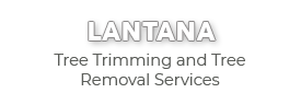 Lantana Tree Trimming and Tree Removal Services-new logo